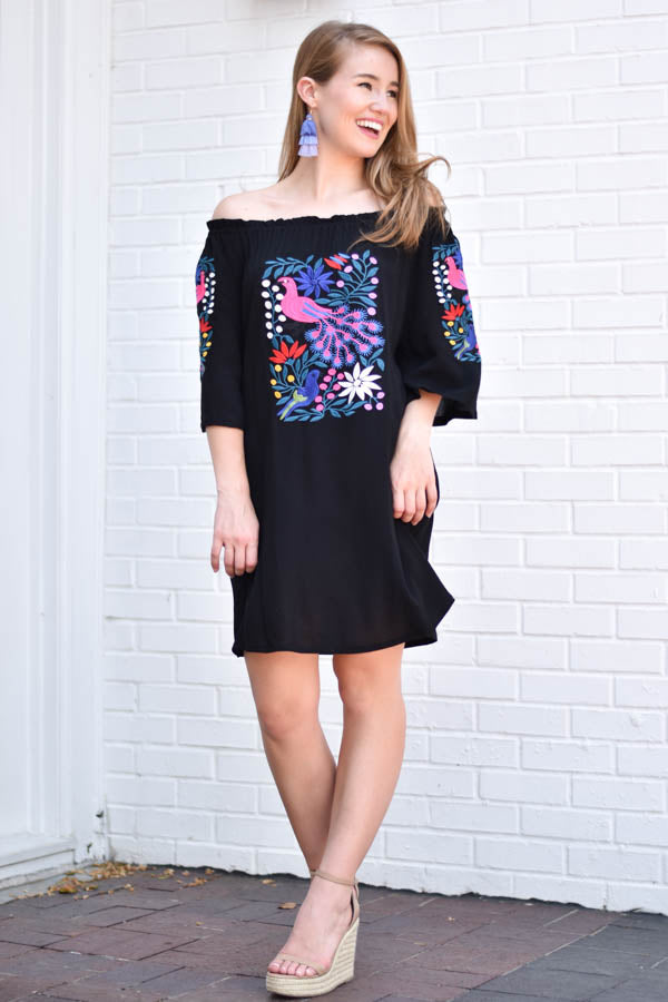 Dancing At Midnight Embroidered Dress