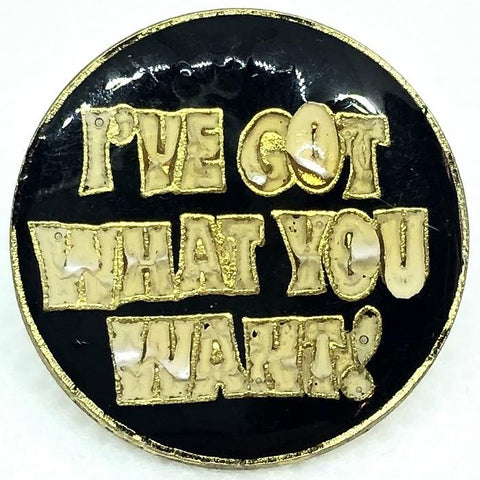 I've Got What You Want! Pin