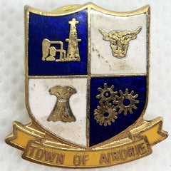 Town Of Airorie Pin