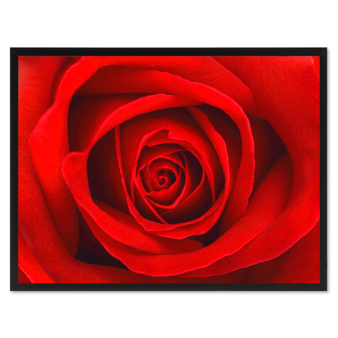 Red Rose Flower Framed Canvas Print Home Décor Wall Art