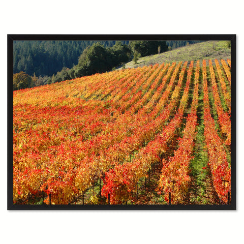 Sonoma Wine Country Landscape Photo Canvas Print Pictures Frames Home Décor Wall Art Gifts
