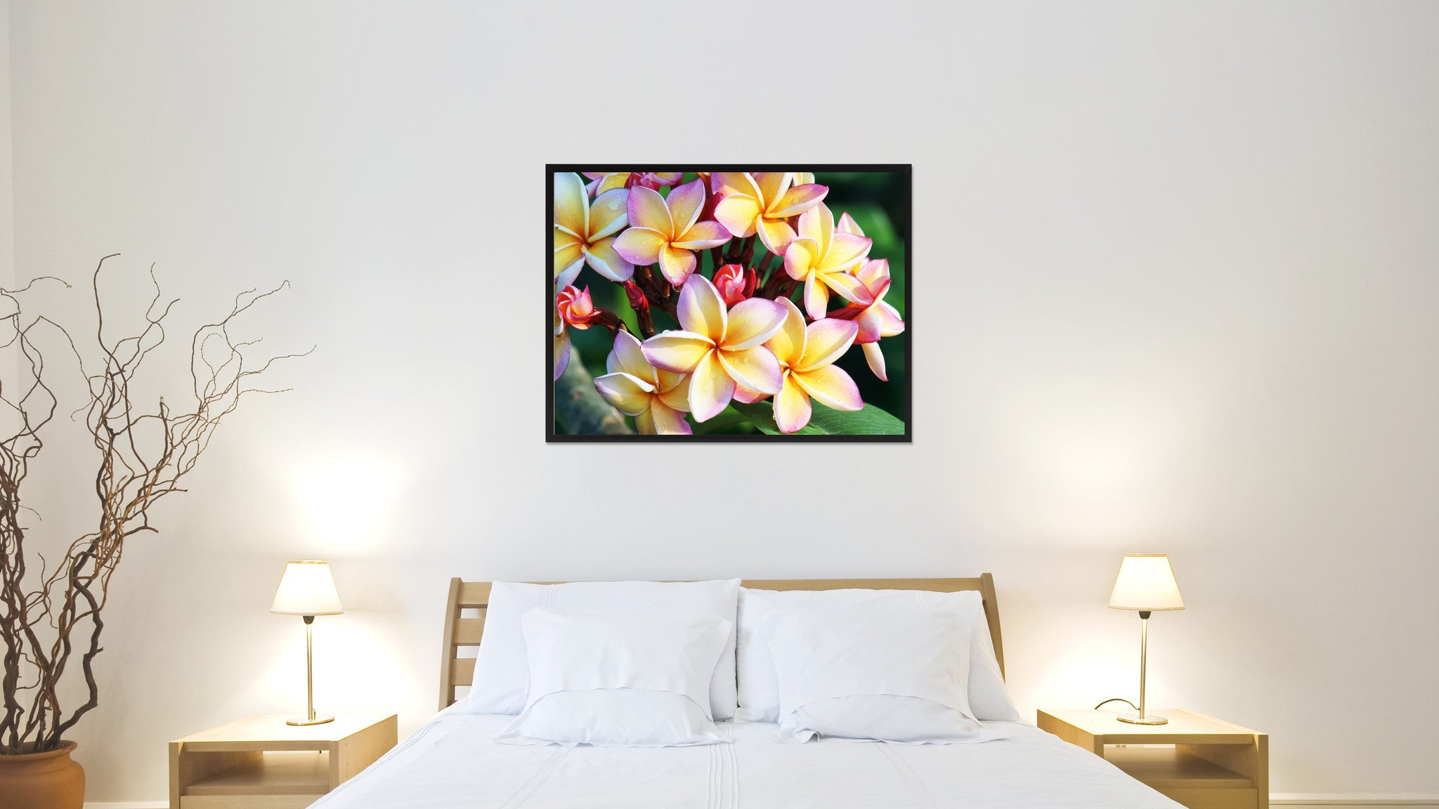 Plumeria Flower Framed Canvas Print Home Décor Wall Art