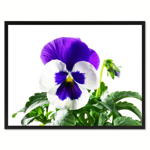 Pansy Flower Framed Canvas Print Home Décor Wall Art