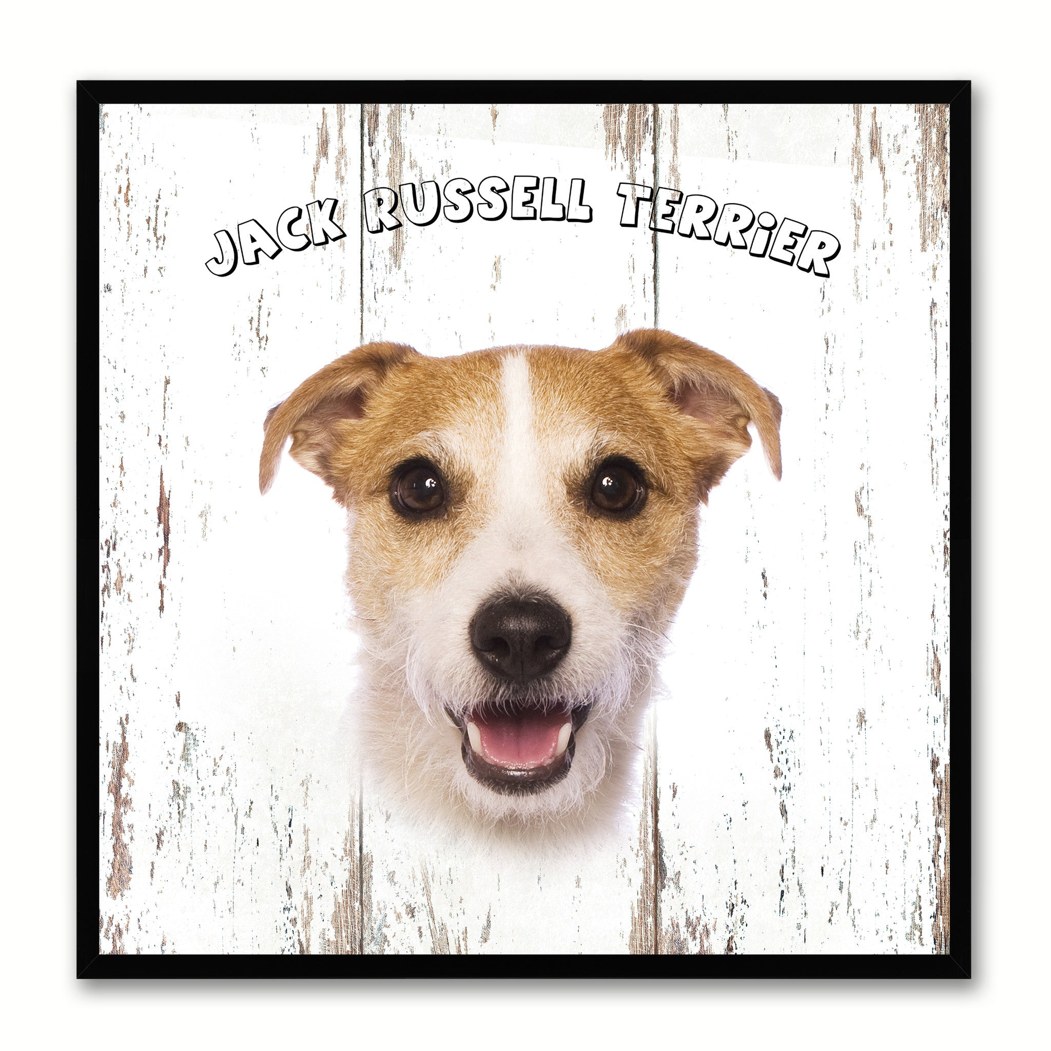 Jack Russell Terrier Dog Canvas Print Picture Frame Gift Home Decor Wall Art Decoration