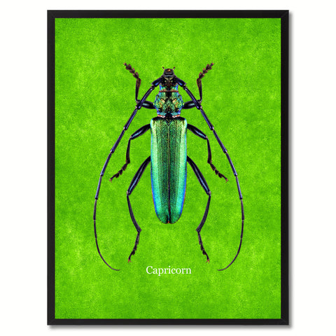 Capricorn Green Canvas Print, Picture Frames Home Decor Wall Art Gifts