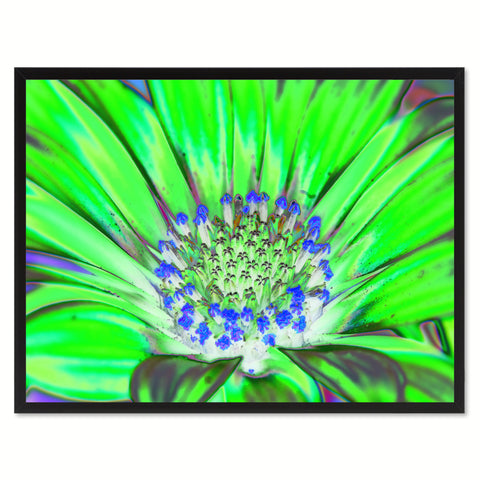 Green Gazania Flower Framed Canvas Print Home Décor Wall Art