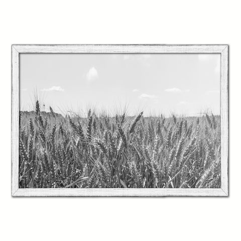 Wheat ears paddy full of grain, on the field Black and White Landscape decor, National Park, Sightseeing, Attractions, White Wash Wood Frame