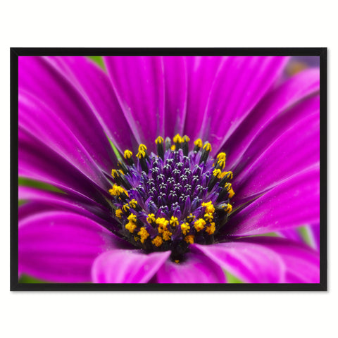 Purple Chrysanthemum Flower Framed Canvas Print Home Décor Wall Art