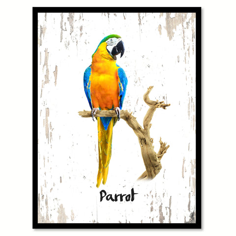 Parrot Bird Canvas Print, Black Picture Frame Gift Ideas Home Decor Wall Art Decoration