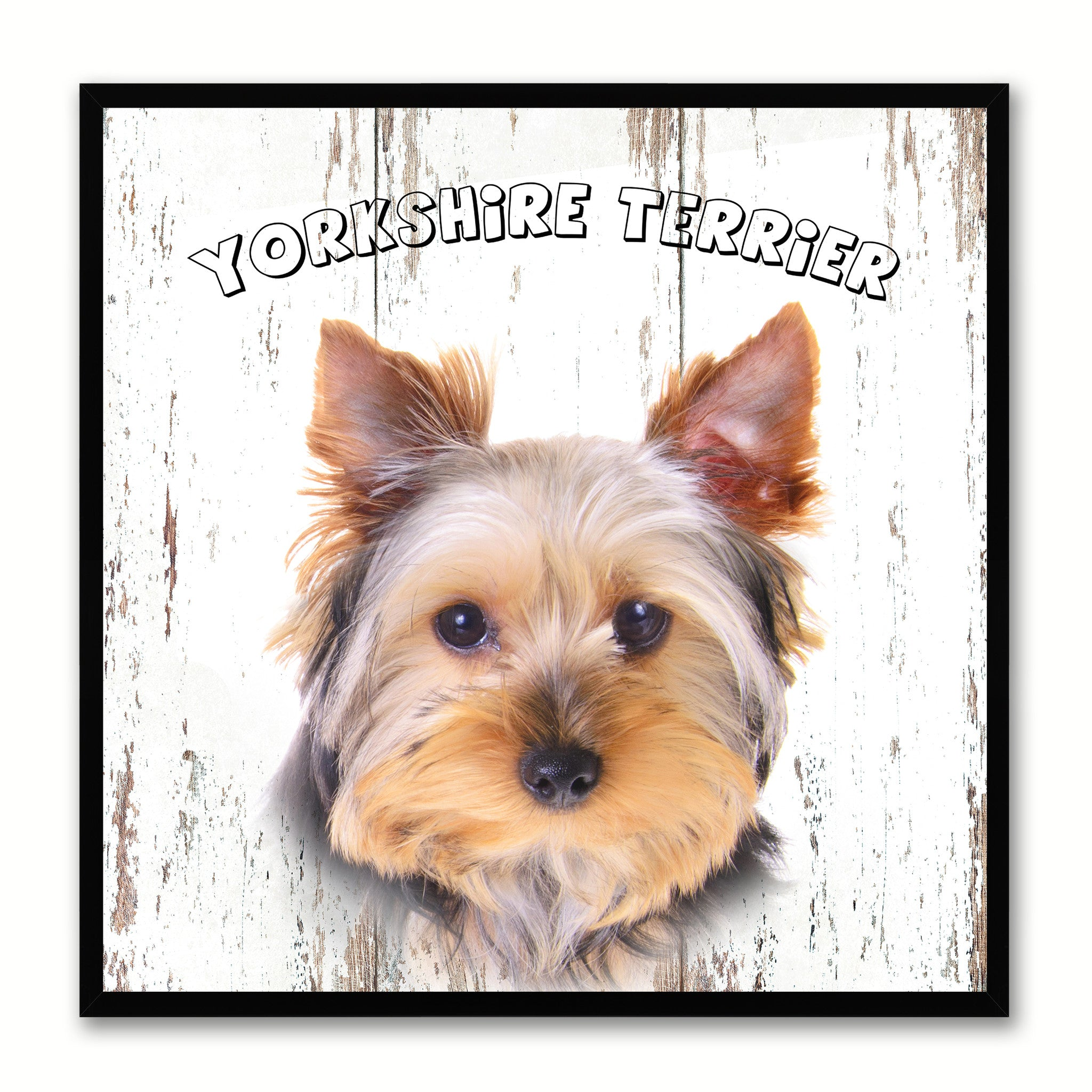 Yorkshire Terrier Dog Canvas Print Picture Frame Gift Home Decor Wall Art Decoration