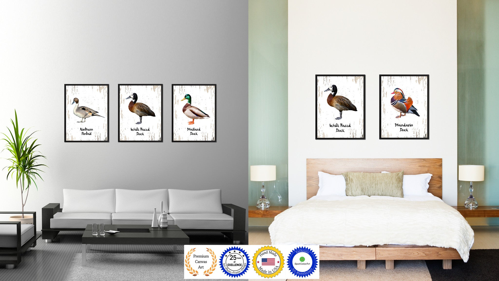 White Faced Duck Bird Gifts Home Decor Wall Art Decoration ...