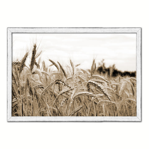 Nutritious Nature Grain Paddy Field Sepia Landscape decor, National Park, Sightseeing, Attractions, White Wash Wood Frame