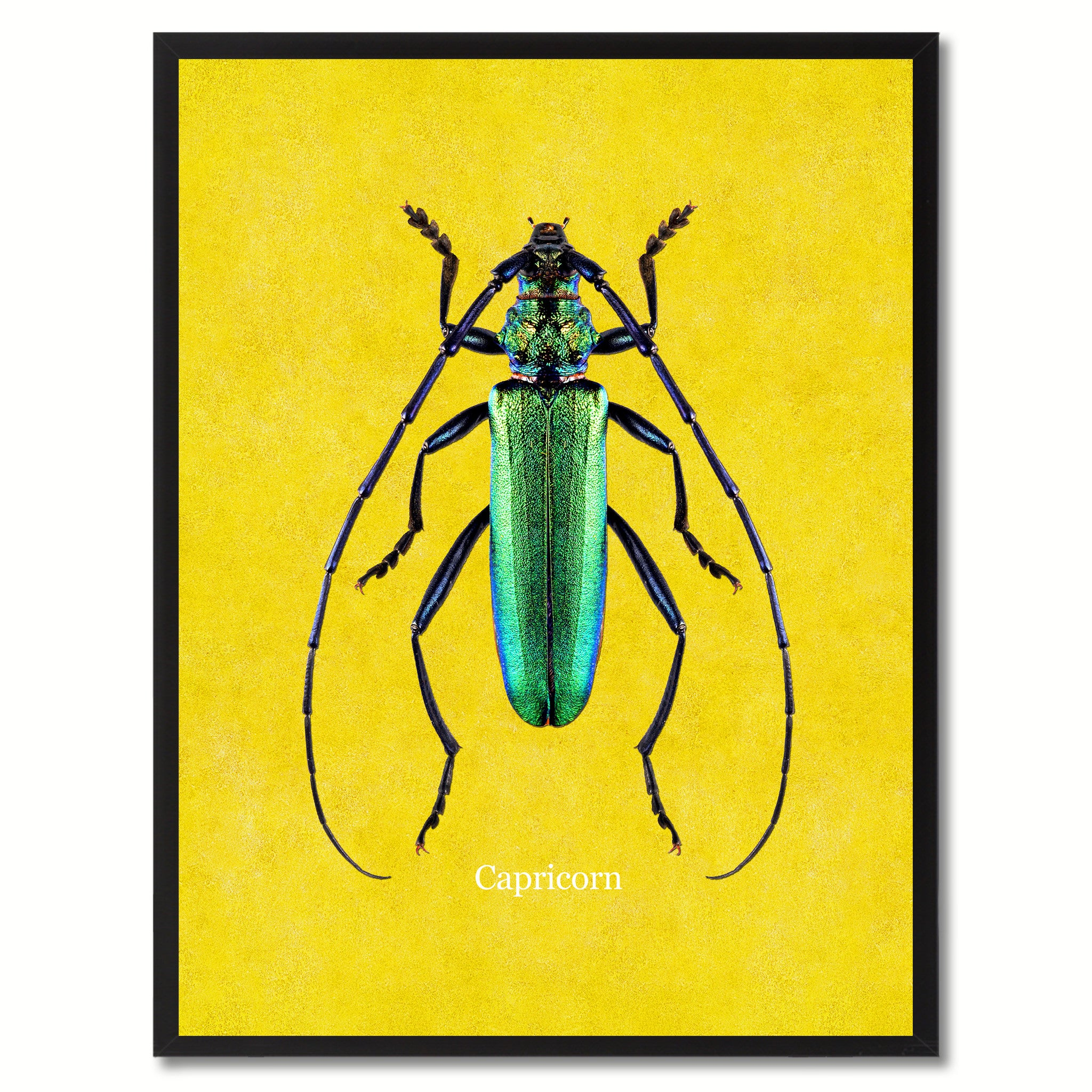 Capricorn Yellow Canvas Print, Picture Frames Home Decor Wall Art Gifts