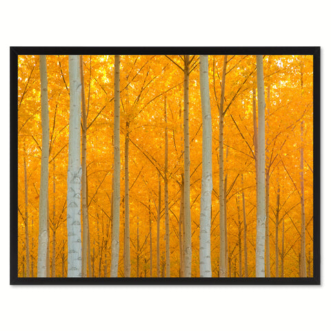 Autumn Tree Orange Landscape Photo Canvas Print Pictures Frames Home Décor Wall Art Gifts