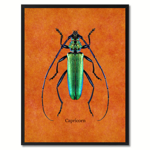 Capricorn Orange Canvas Print, Picture Frames Home Decor Wall Art Gifts