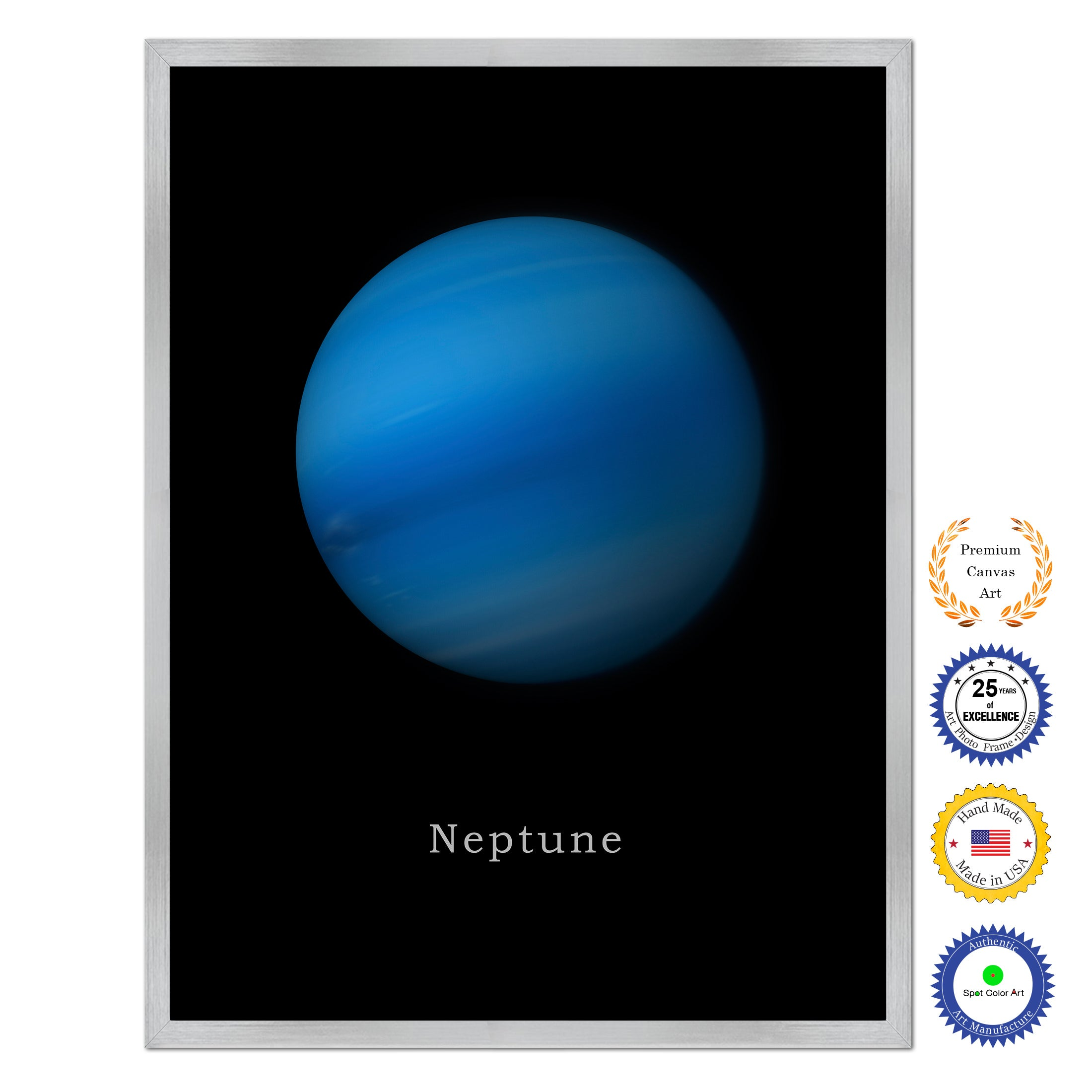 Neptune Print on Canvas Planets of Solar System Silver Custom Framed Art Home Decor Wall Office Decoration