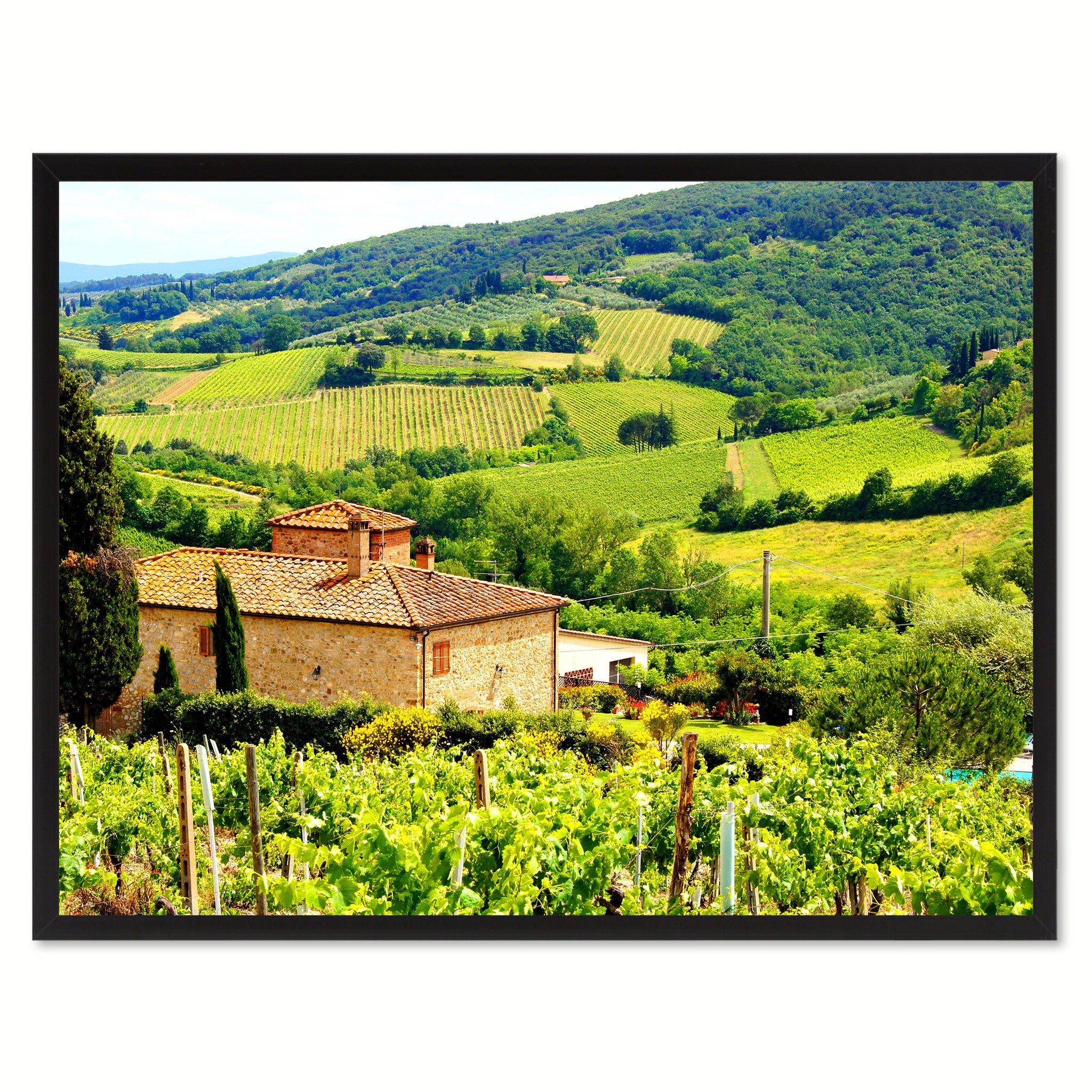 Vineyard Tuscany Italy Landscape Photo Canvas Print Pictures Frames Home Décor Wall Art Gifts
