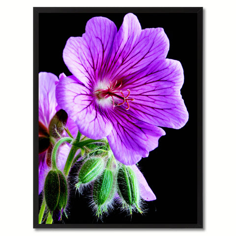 Purple Cranesbill Geranium Flower Framed Canvas Print Home Décor Wall Art