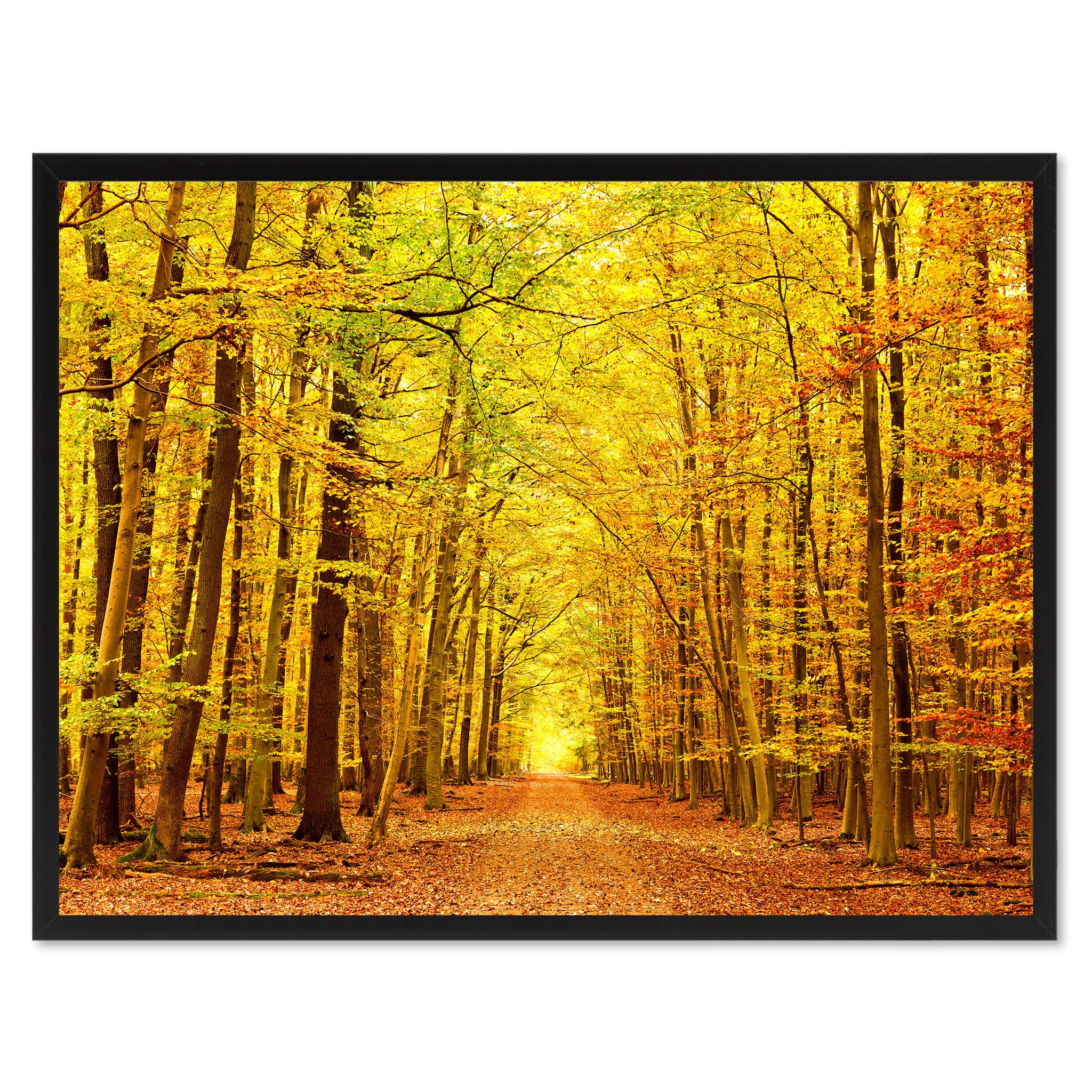 Road Yellow Landscape Photo Wall Art Home Décor Frame – SpotColorArt