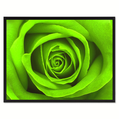 Green Rose Flower Framed Canvas Print Home Décor Wall Art
