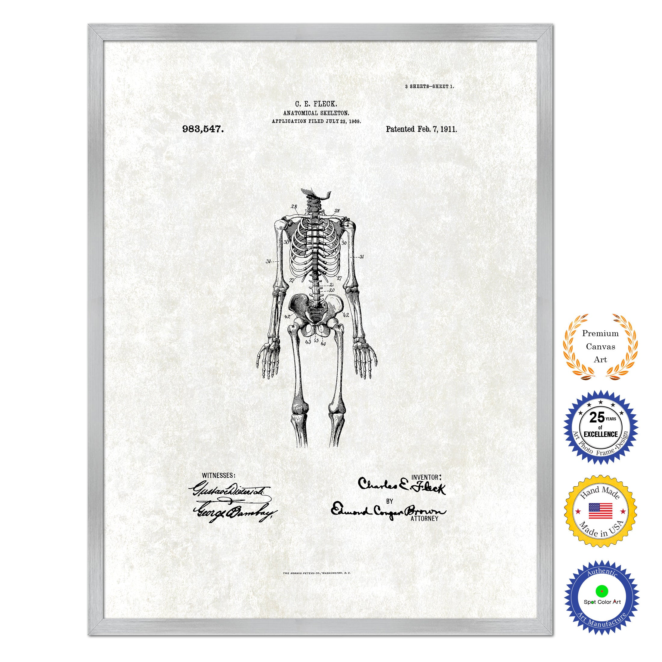 1911 Doctor Anatomical Skeleton Antique Patent Artwork Silver Framed Canvas Print Home Office Decor Great for Doctor Paramedic Surgeon Hospital Medical Student