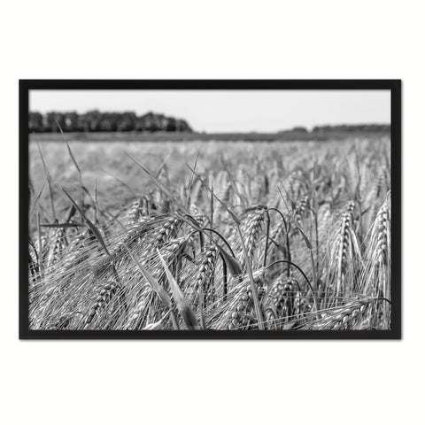 Barley paddy Black and White Landscape decor, National Park, Sightseeing, Attractions, Black Frame