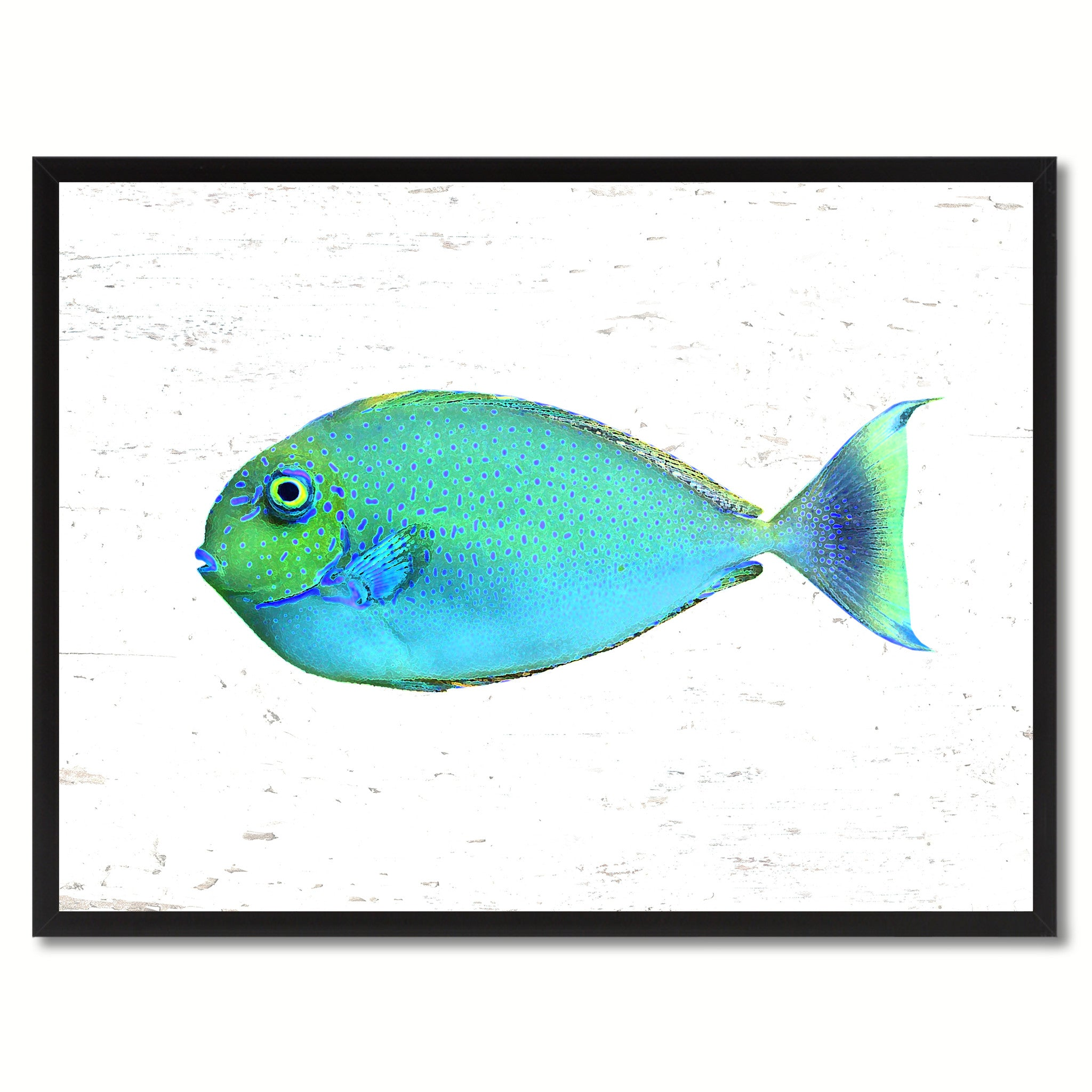Aqua Tropical Fish Painting Reproduction Canvas Print Home Decor ...