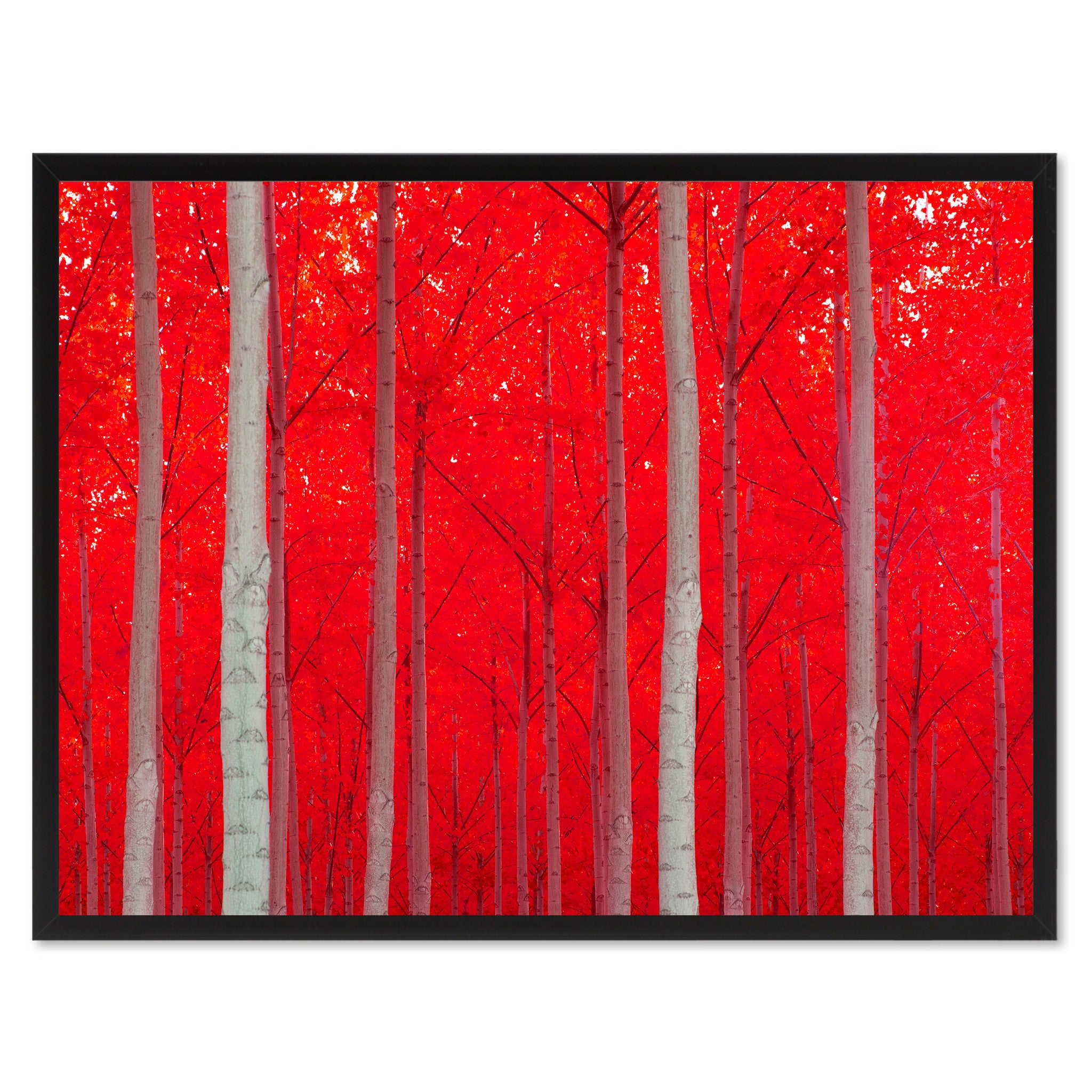 Autumn Tree Red Landscape Photo Canvas Print Pictures Frames Home Décor Wall Art Gifts