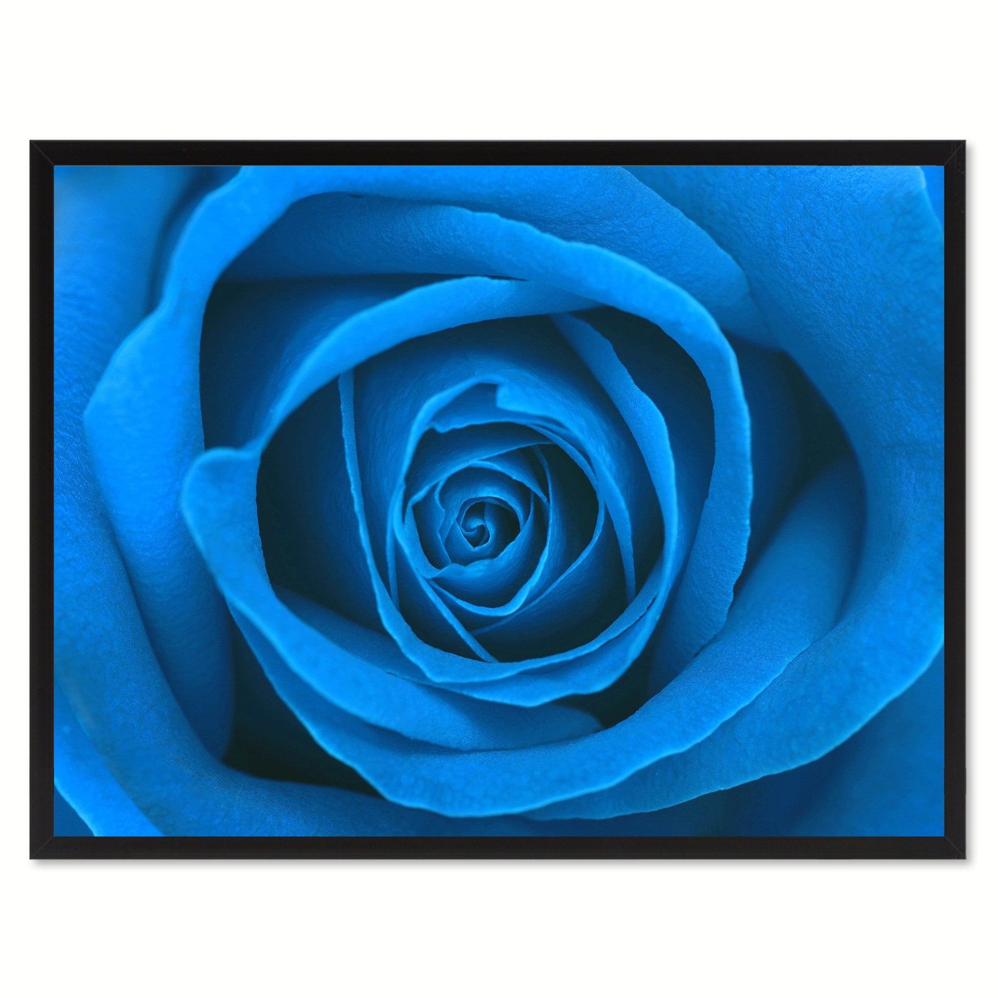 Blue Rose Flower Framed Canvas Print Home Décor Wall Art