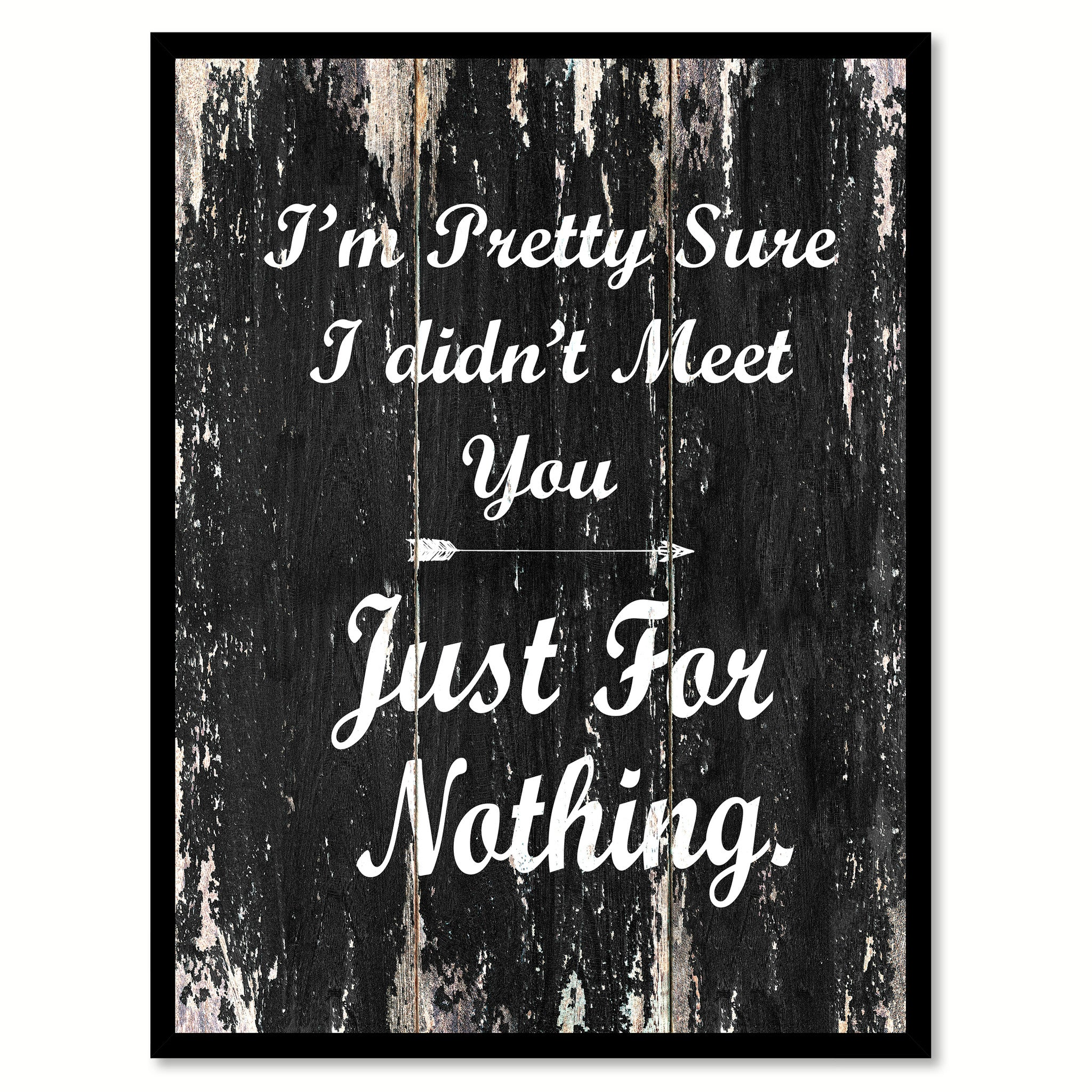 I'm pretty sure I didn't meet you just for nothing Funny Quote Saying Canvas Print with Picture Frame Home Decor Wall Art