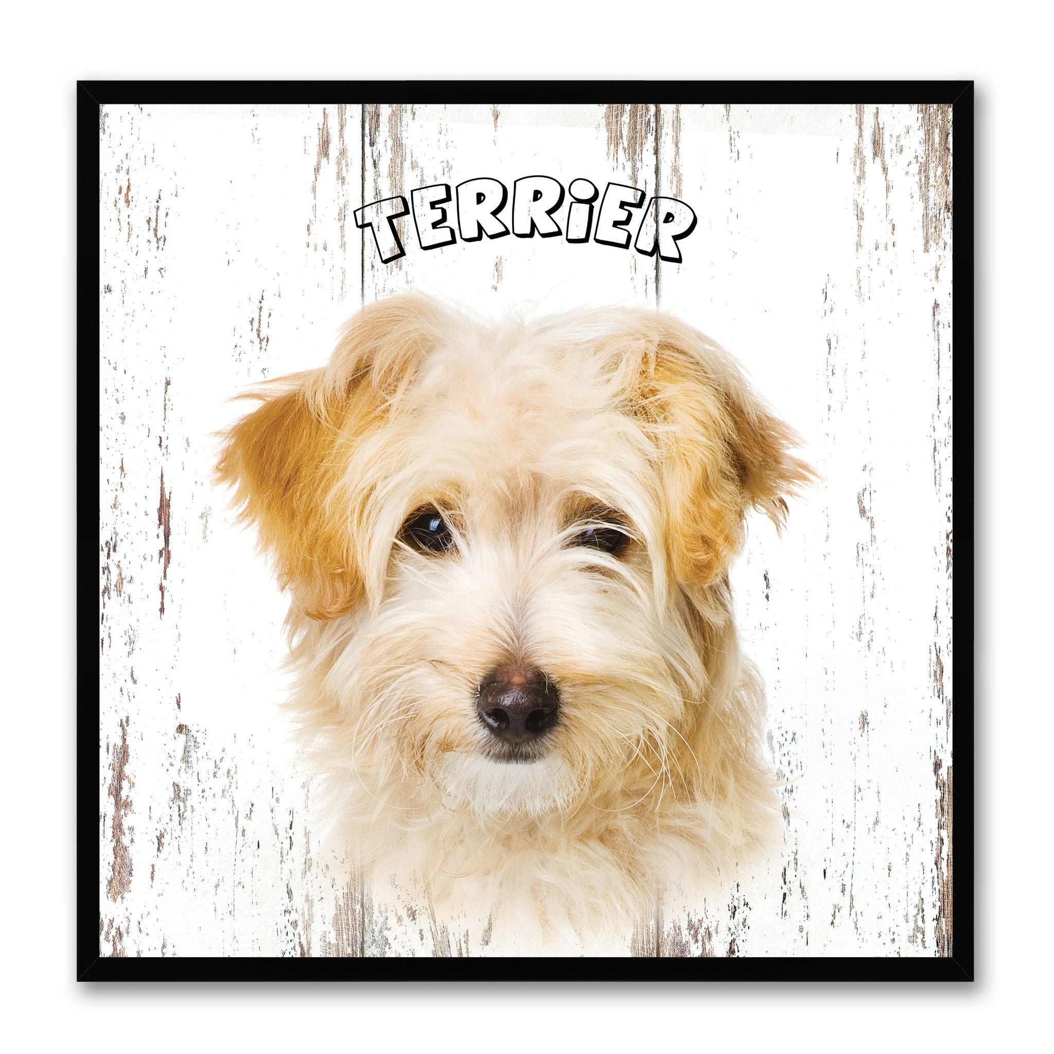 Terrier Dog Canvas Print Picture Frame Gift Home Decor Wall Art Decoration