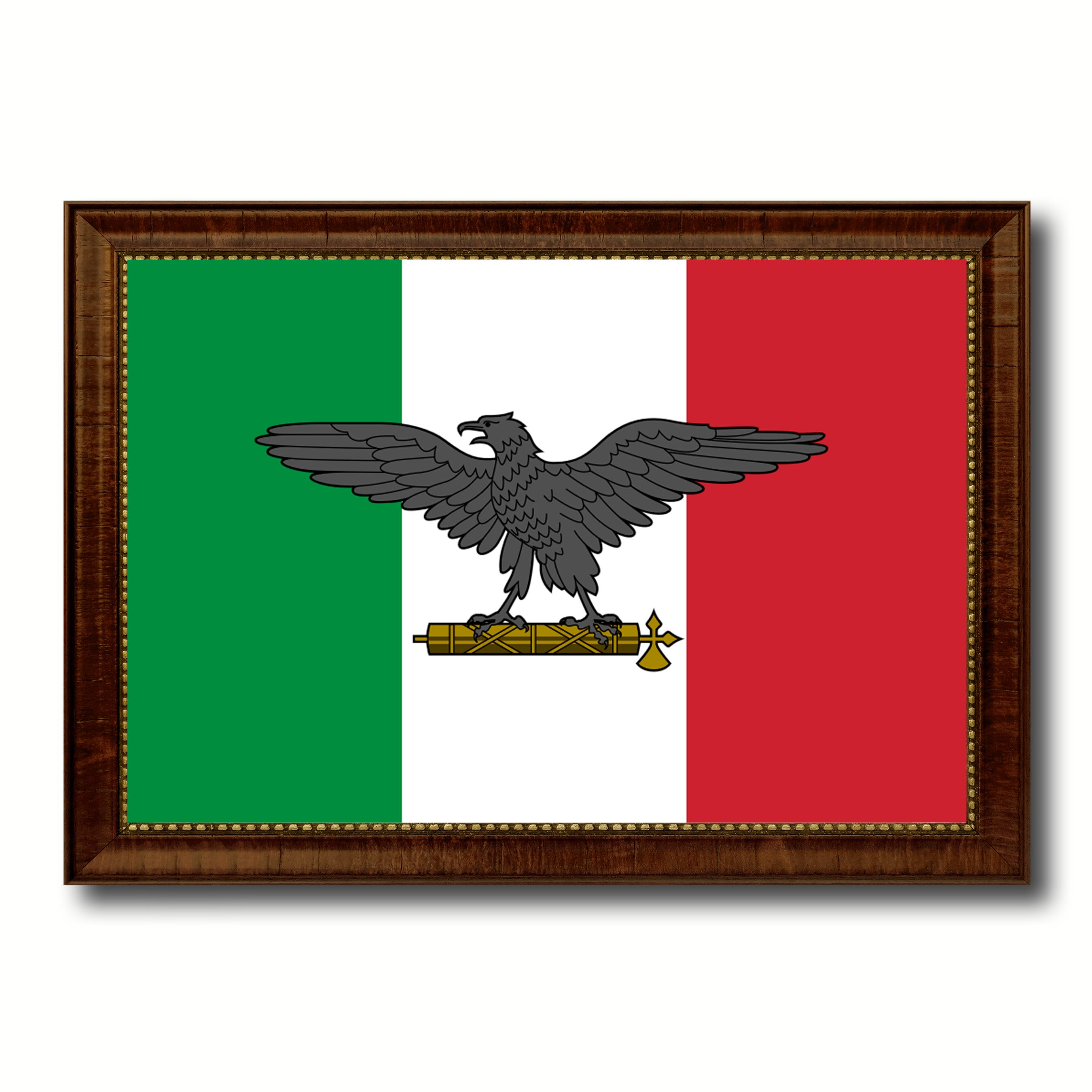 Italy War Eagle Italian Military Flag Patriotic Office Wall Home Decor Livingroom Interior Design Gift Ideas Decoration SpotColorArt
