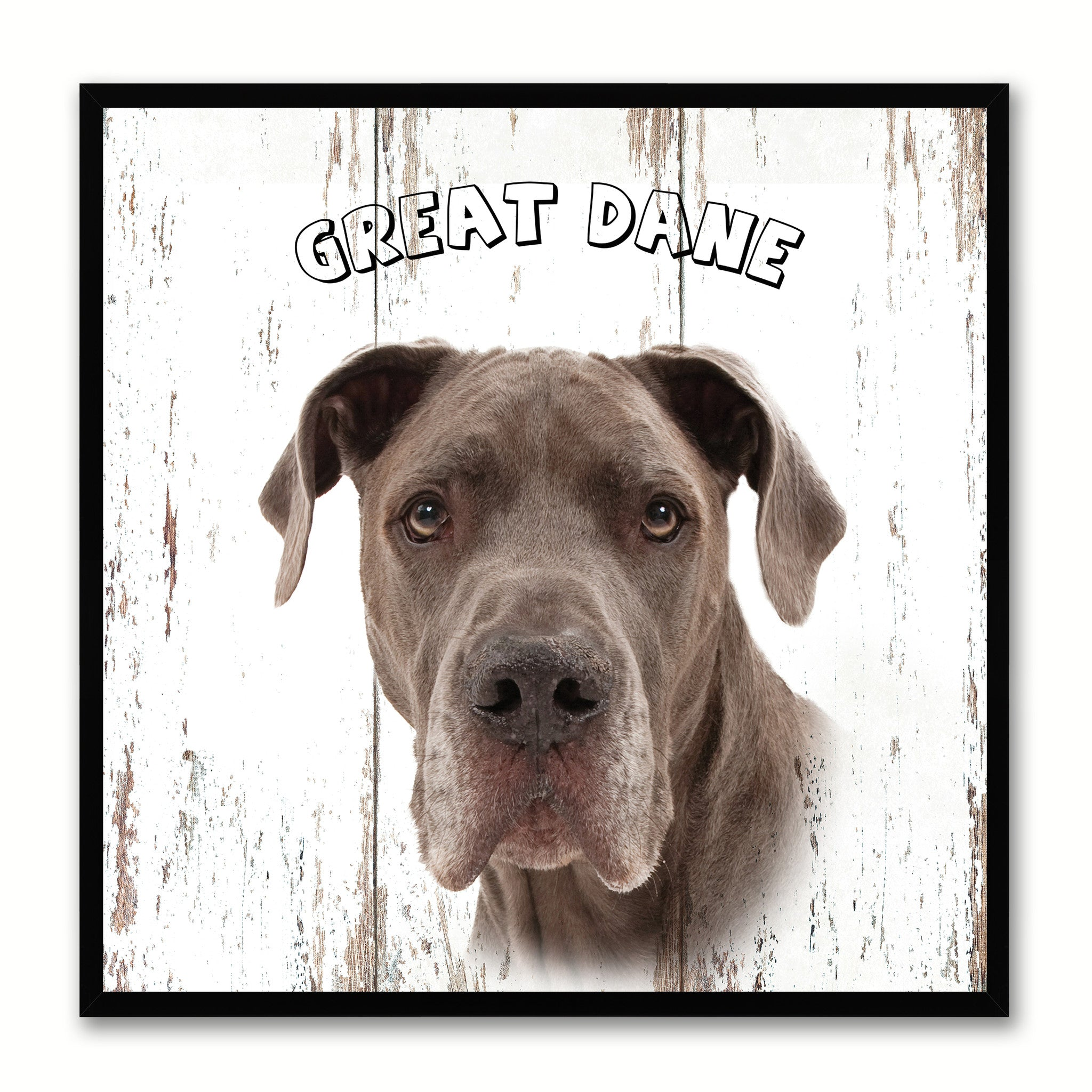 GreatDane Dog Canvas Print Picture Frame Gift Home Decor Wall Art Decoration
