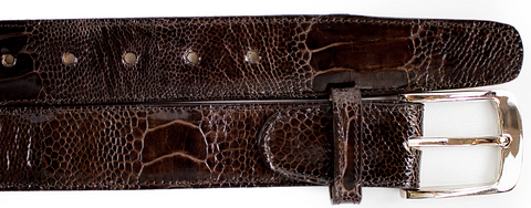Ostrich Leg Belt- Brown