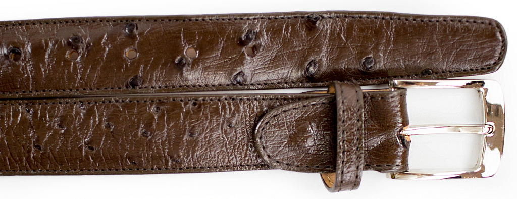 Ostrich Quill Belt- Brown