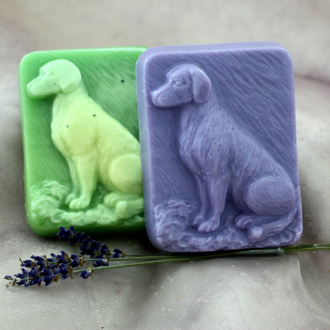 Bow Wow Shampoo Bar