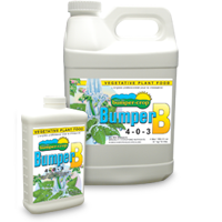 Bumper B  Vegetative plant food, Nutrients, IncrediGrow, IncrediGrow - IncrediGrow