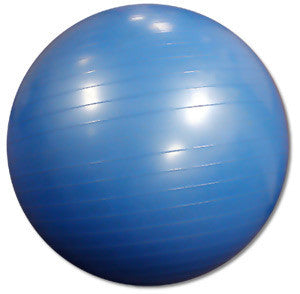 Ultimate Fitness Stability Ball Spartan Fitness