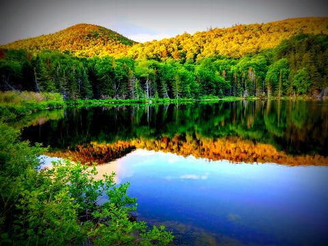 Saco Lake, Crawford Notch, New Hampshire. Copyright Rebecca M. Fullerton, 2018.