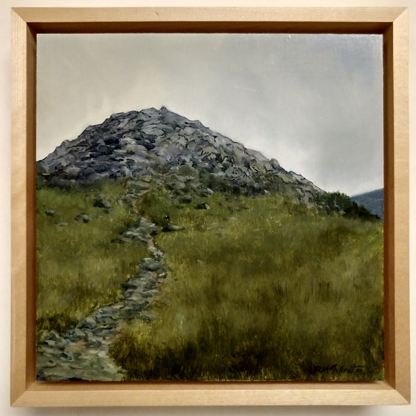 """False Summit"" is a 10 by 10 inch oil on panel landscape painting by Rebecca M Fullerton, depicting a rocky promontory surrounded by sedge and alpine plants along the Presidential Range of the White Mountain National Forest in New Hampshire. This image shows the painting in its 11.5 by 11.5 inch maple float frame."