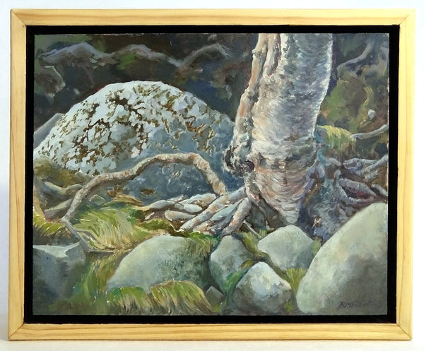 "This is a framed view of ""Roots and Rocks,"" an 8 by 10 inch oil painting on panel by Rebecca M. Fullerton, depicting gray, granite rocks, green grasses and moss, and the twisting roots of a silver birch."