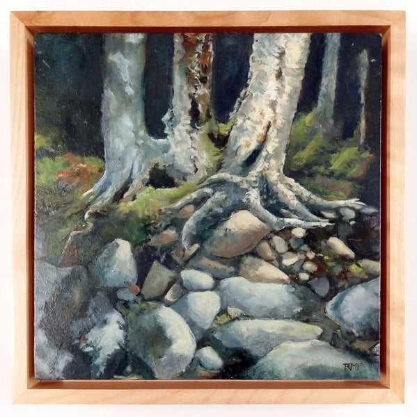 "This is a framed view of ""Riverbank Boulders,"" a 10 by 10 inch oil painting on panel by Rebecca M. Fullerton, depicting riverbank rocks and the roots of birch and hardwood trees climbing down over them. Sunlight strikes green mosses at the base of the trees, and the rocks in sunlight are many shades of gray, beige and ochre."
