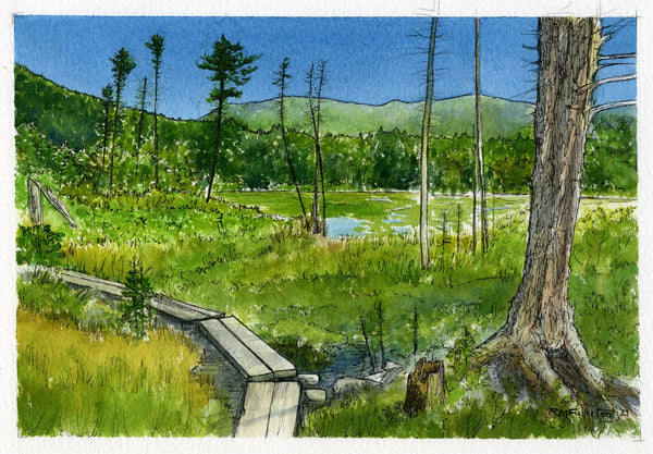 """Lonesome Lake Bog Bridges"" is a 6 by 9 inch watercolor and ink painting on paper, in a 12 by 15 inch birch wood frame, depicting the simple log trail bridges found on the sides of Lonesome Lake in New Hampshire's White Mountains."