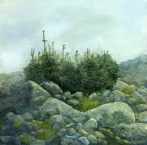 Heart of the Alpine Zone, original landscape oil on panel painting by Rebecca M Fullerton. Scenes from the Presidential Range, White Mountain National Forest, New Hampshire.