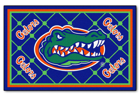 Florida Gators Area rug - 4'x6'