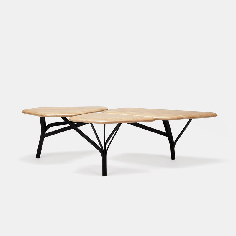 Borghese Coffee Table - Monologue London