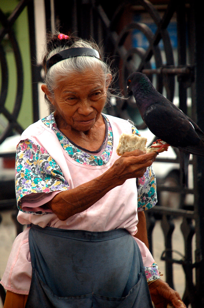 Lady and Pigeon