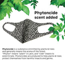 Graphene Phytoncide Deodorizing Fragrance Comfortable Breathable Reusable, Washable Cloth Fabric 3D Korean Fashion Face Mask White w/ Lines 3 PACK