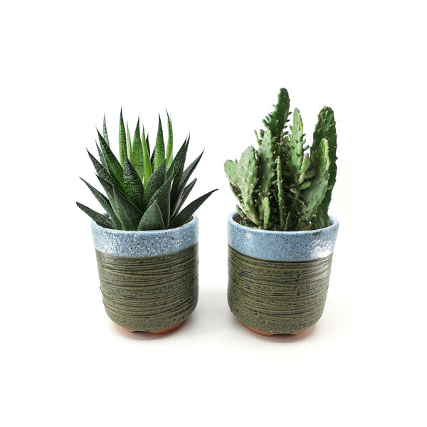 Set of 2, 4 Inch Container Planter Ceramic Flowering Succulent Cactus Plant Pot