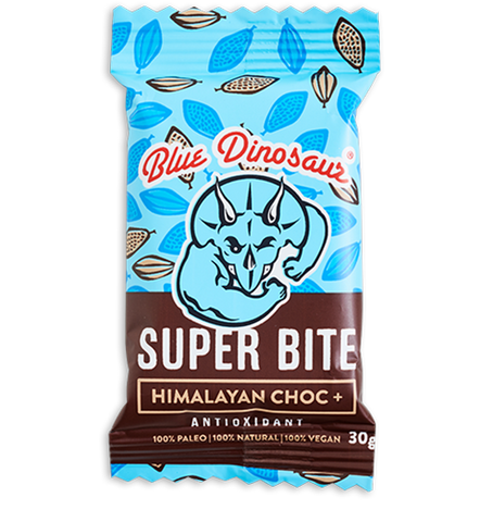 Blue Dinosaur | Paleo Bars and Snacks